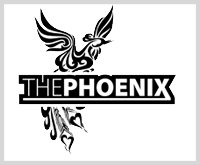 Denga surfboard the phoenix